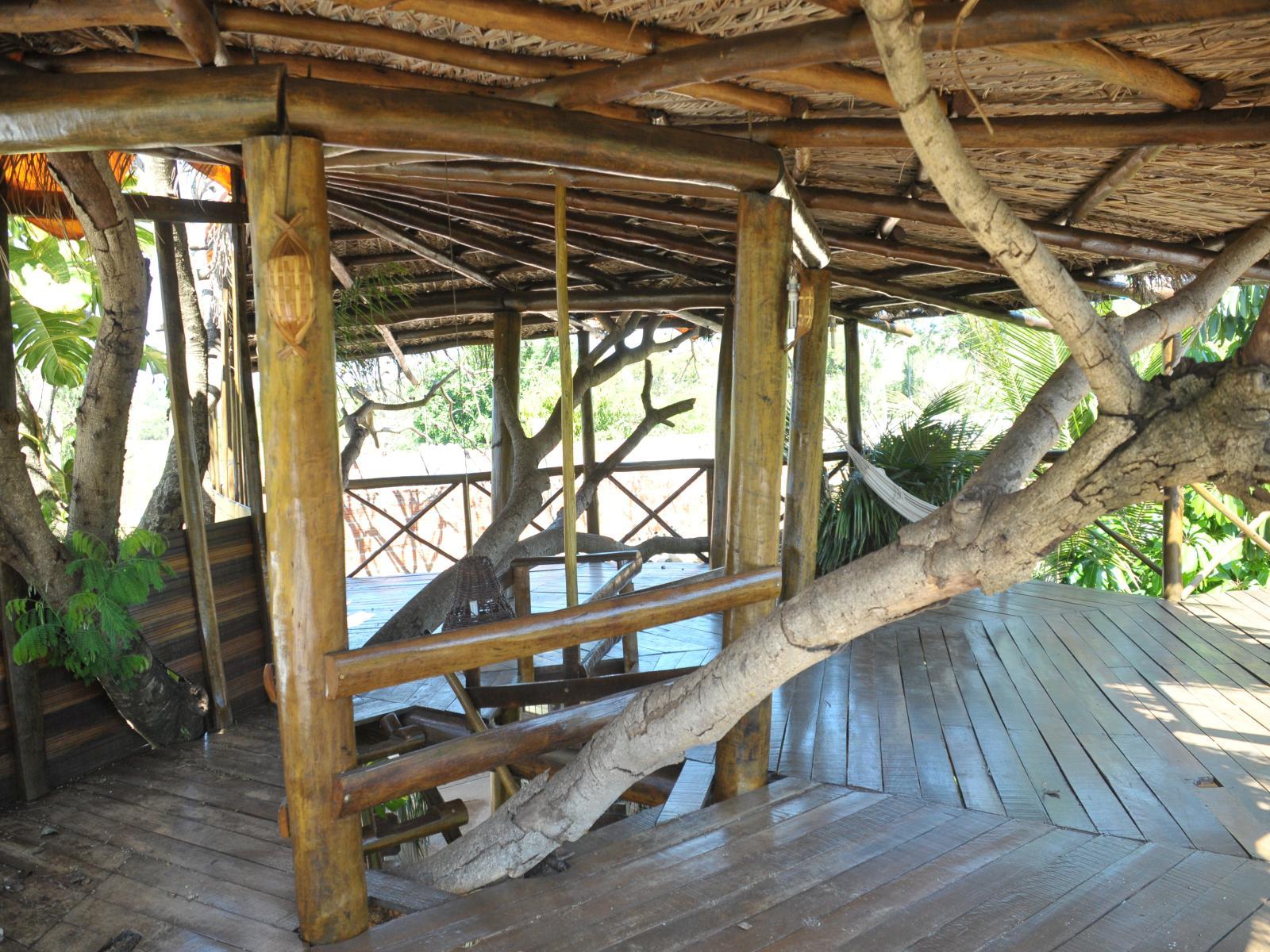 Dentro da casa da árvore