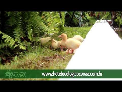 Hotel Ecologico Canaã – Institucional
