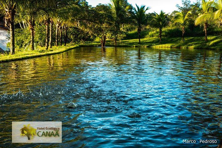 Quer ser DONO de cotas no Hotel Ecológico Canaã?⤵️   17 98212-8021   ️ 17. 3323-…
