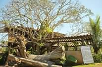 HOTEL ECOLÓGICO CANAÃ Quer ser dono de cotas no Hotel Ecológico Canaã?    17 982…